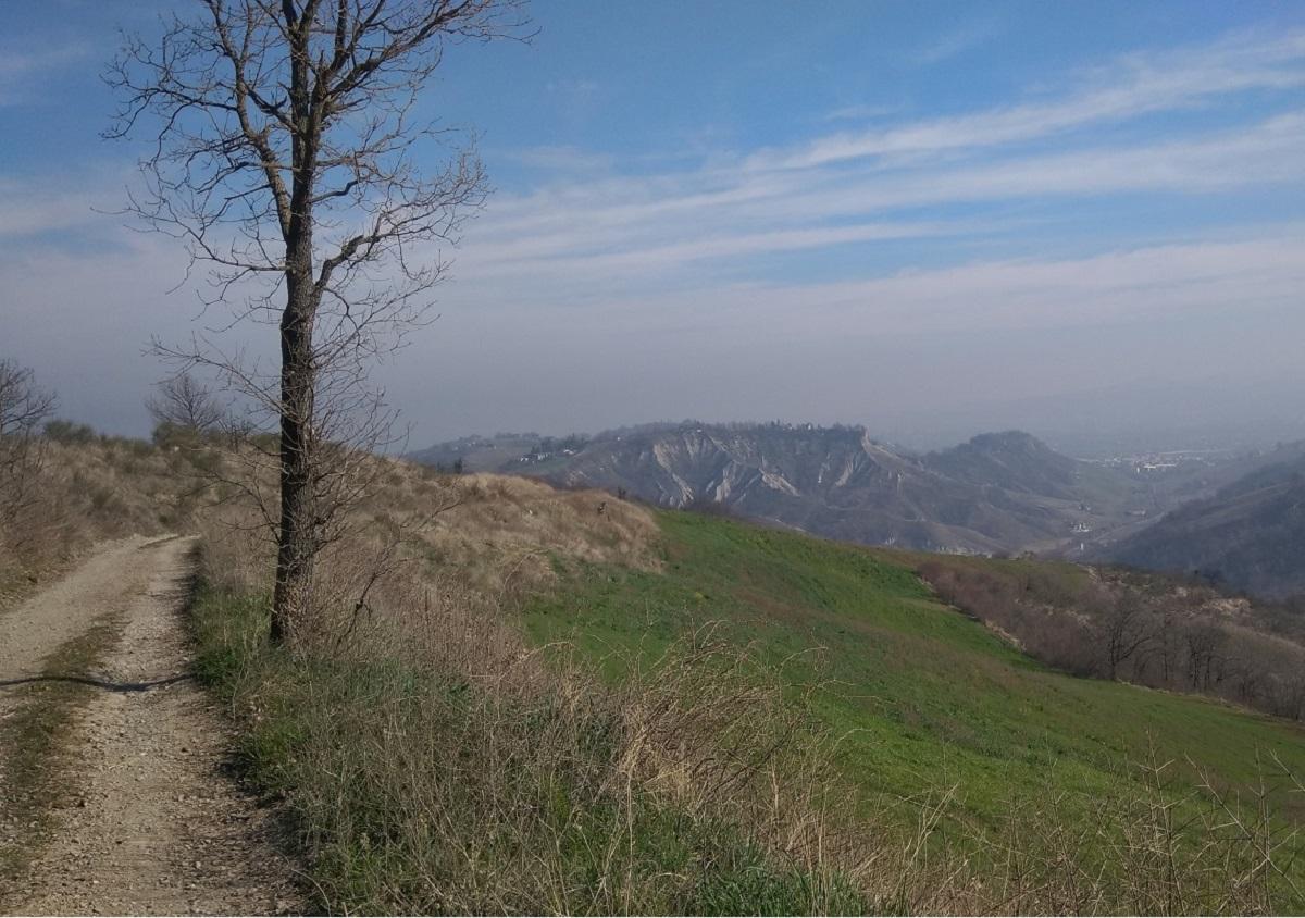 colline modenesi